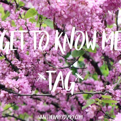 Get To Know Me Tag