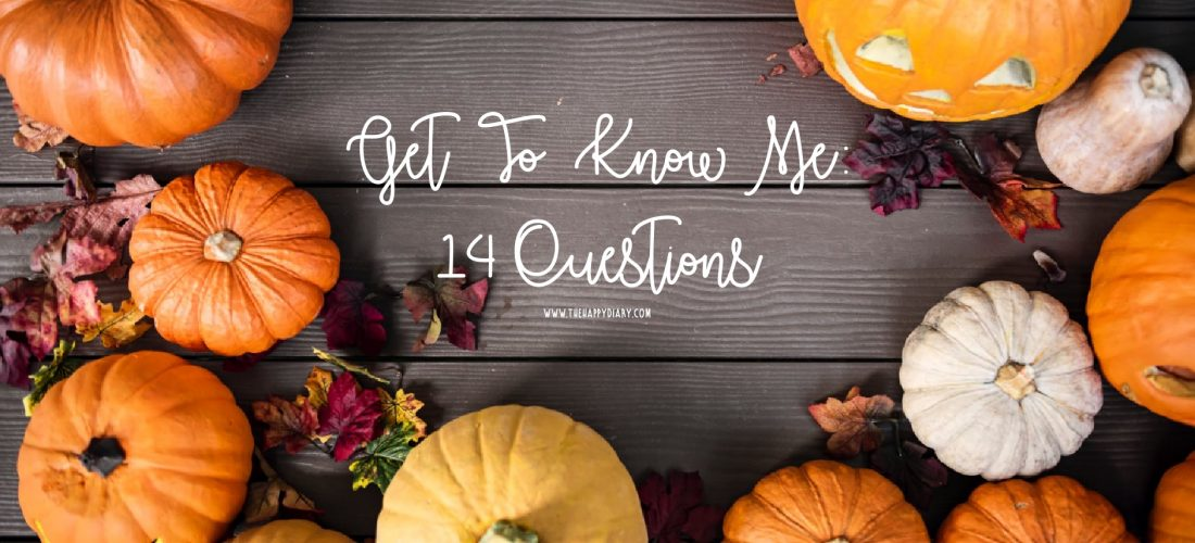 Get to Know Me: 14 Questions